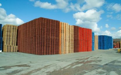 Wood pallet reuse grows for successive year